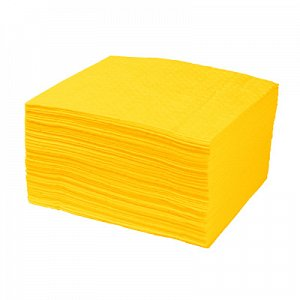 Chemical Spill Pad